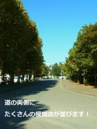 ファイル 1011-3.jpg