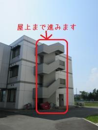 ファイル 2006-1.jpg