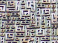 ファイル 2054-2.jpg