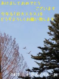 ファイル 2395-2.jpg