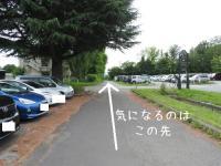 ファイル 2518-1.jpg
