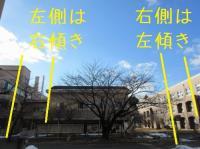 ファイル 2659-3.jpg