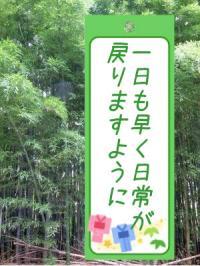 ファイル 3253-1.jpg