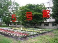 ファイル 348-2.jpg
