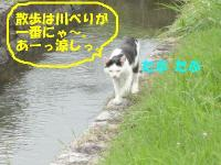 ファイル 415-4.jpg