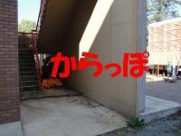ファイル 459-3.jpg