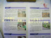 ファイル 643-2.jpg