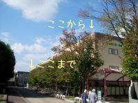 ファイル 746-3.jpg