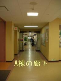 ファイル 746-4.jpg