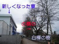 ファイル 799-1.jpg